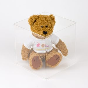 Medium Teddy
